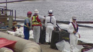 Questions unanswered from Nova Scotia Power about oil spill